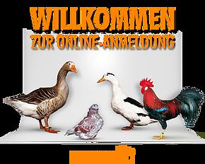 Logo Gefluegelschau-online